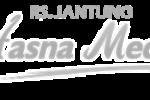 rsjantunghasnamedika
